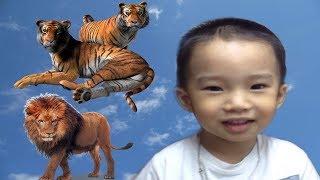 teach children learn wildlife