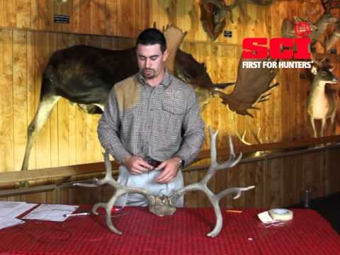 How to SCI Score a Non-Typical Mule Deer