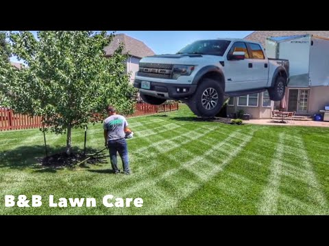 My Most Beautiful Lawn and Landscaping Jobs!!