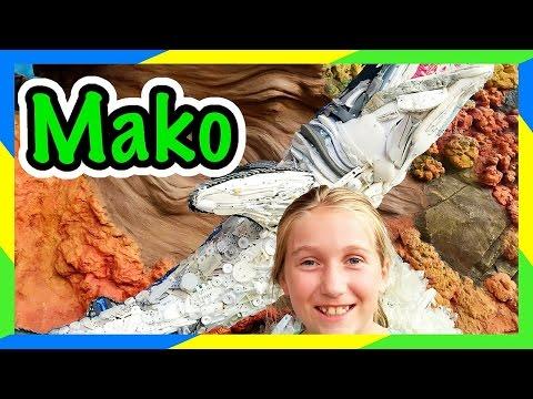 MAKO COASTER POV | DAY AT SEAWORLD ORLANDO