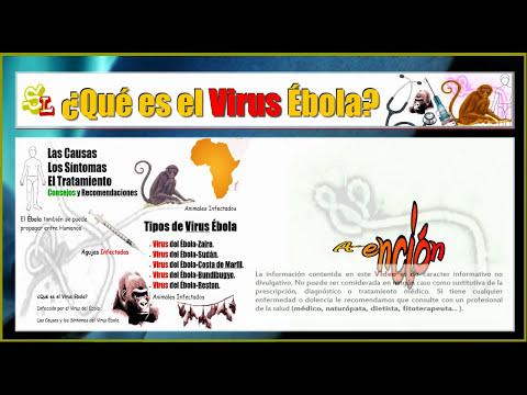 ¿Qué es el Virus Ébola? Fiebre Viral Hemorrágica, Infección por el Virus del Ébola