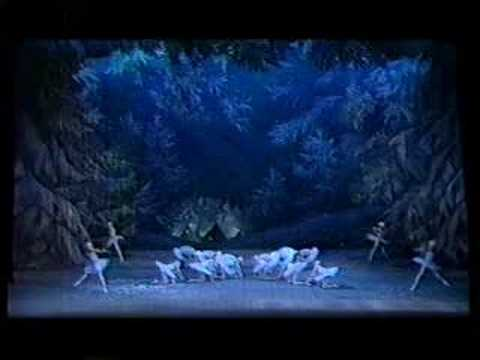 Waltz of the Snowflakes from The Nutcracker (Mariinsky)
