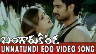 Unnatundi Edo Video Song || Bangaru Konda Movie || Rishi, Navneet Kaur
