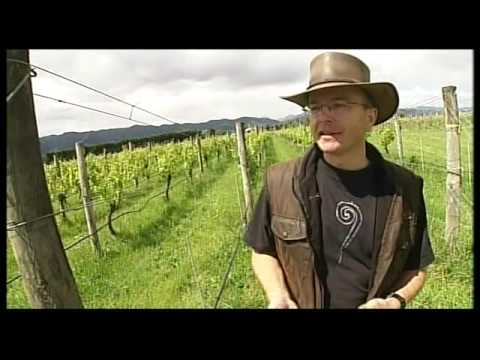 Richmond Plains - Organic Wine - Nelson, New Zealand