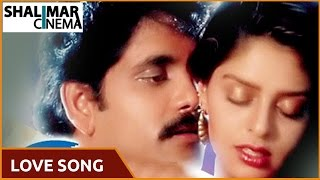 Love Song Of The Day 203 || Telugu Movies Love Video Songs || Shalimarcinema || Shlimarcinema
