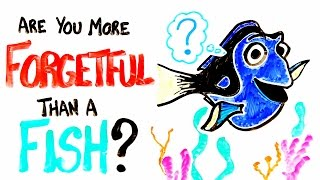 Are You More Forgetful Than A Fish?