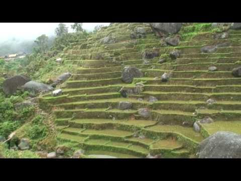 Madagascar - Part 4 - Voyage a pied en Pays Zafimaniry Tanala Betsileo