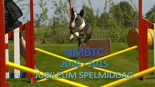 Mini Bull Terrier Games