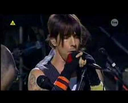 RED HOT CHILI PEPPERS LIVE IN POLAND - SCAR TISSUE
