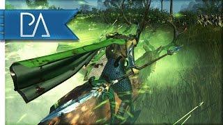 WOOD ELVES AT WAR! - Total War: WARHAMMER Gameplay