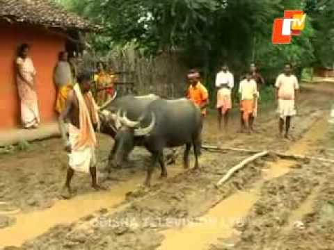 News Fuse 17 September 2014 video