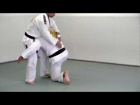 Double Leg Takedown - BJJ Blue Belt Requirements Technique #1 Image 1