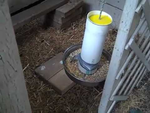 Making A DIY Gravity Feeder For CHICKENS