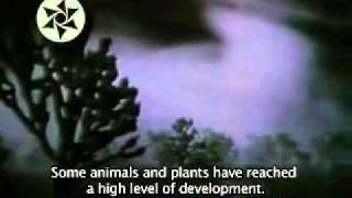 Viagens no Hiperespaço - Caso Billy Meier_xvid_arc.avi