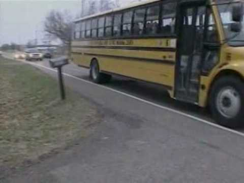 Kid goat rides bus with school kids Video