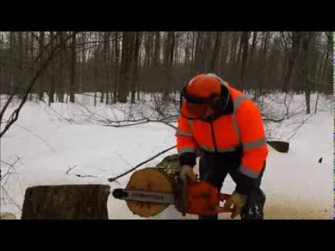 Huztl 372 Cuts Its FIRST Tree! ( 4 of 5 ) (Aftermarket Chainsaw Parts Series. by Hill Top Saw Shop)