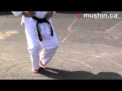 Karaté Shotokan Positions De Base:  Zenkutsu-dachi Et Kokutsu-dachi   Shotokan Karate Basic Stances video