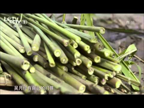 A Bite of China Season 2 - Daily life