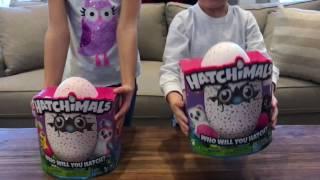 Hatchimals Hatching! One Works, One Fails
