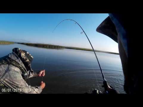 запрет на рыбалку иртыш караганда