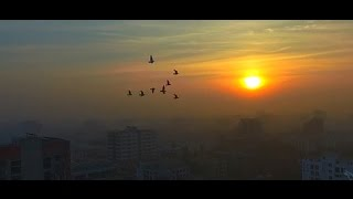 Incredible drone video of Bangladesh's beautiful countryside (HD)