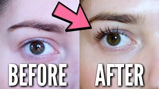 THIS WILL CHANGE YOUR LASH GAME FOREVER!