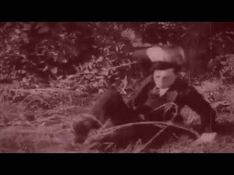 Aiken - Gathered [Semantica Records]