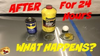 Will BRAKE FLUID, EGG or WD-40 Eat Clear Coat in 24 HOURS?