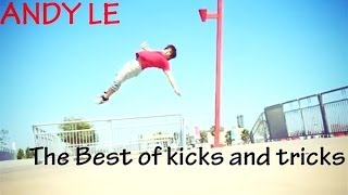 The Best of Andy Le | The kick and tricking MIX