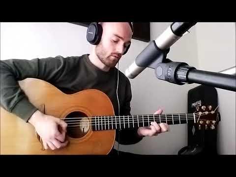 Levels - Avicii - Acoustic Guitar Loop Pedal Cover