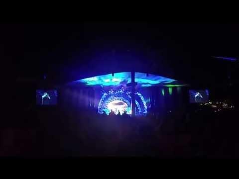 Eddie Van Halen Guitar Solo, You Really Got Me + Panama