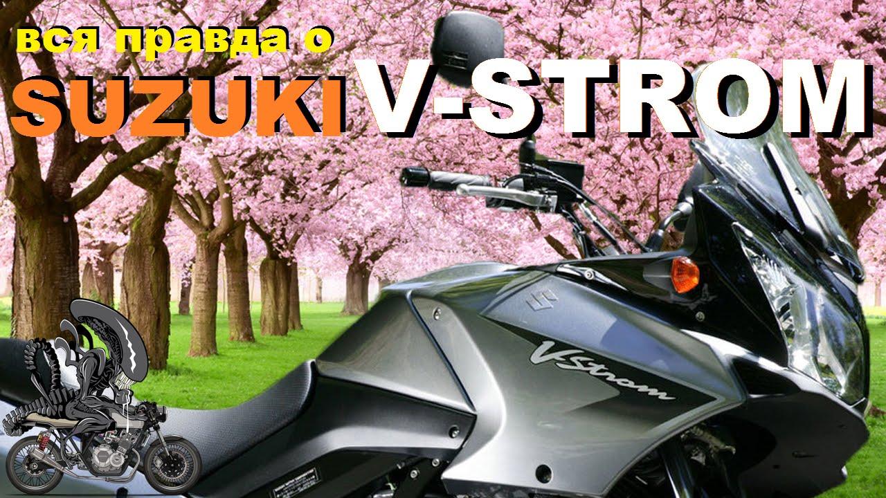 Suzuki V STROM  сузуки [Вся правда о]