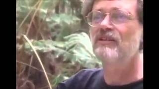 Terence McKenna Galaxies Are Organisms (& So Are Nebulae)