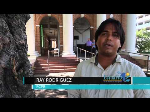 Siembra y embellecimiento de Santurce