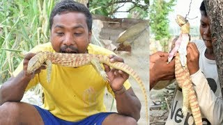 Lizard best cooking 2019 by khurapati fun