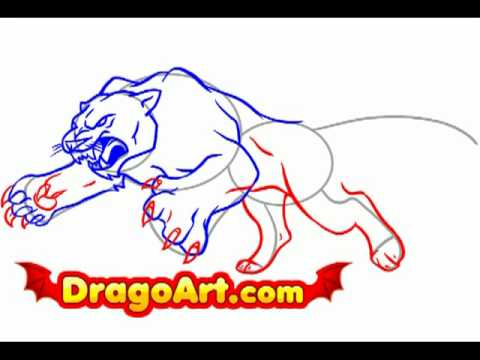 how to draw a panther video