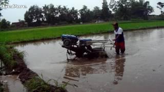 Iseki Agrindo Diamond Hands Tractor
