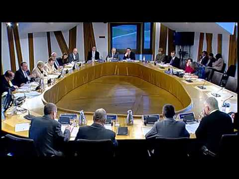 Health & Sport Committee - Scottish Parliament: 17th December 2013