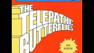 Watch Telepathic Butterflies Narcissus video