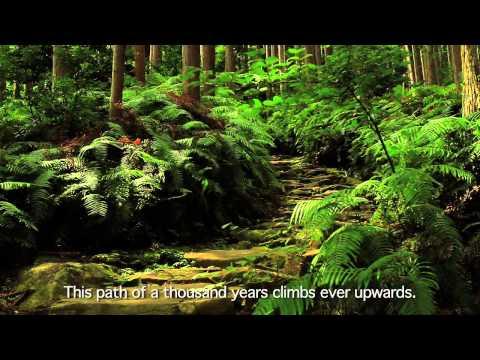 [Beautiful Japan] World Heritage Kumano Kodo Pilgrimage Routes