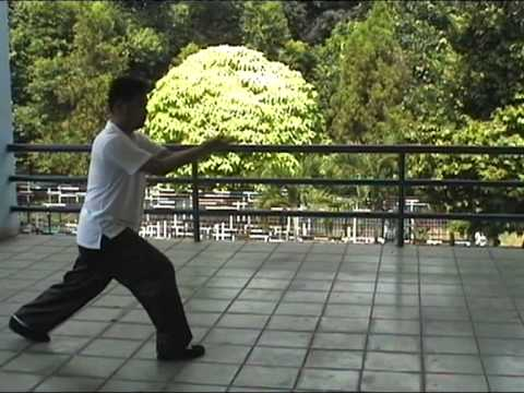 Kaiyu's Bajiquan -- Xiao Baji (Rear View) Image 1