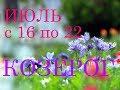 КОЗЕРОГИ. ГОРОСКОП на НЕДЕЛЮ с 16 по 22 ИЮЛЯ 2018г. +БОНУС.