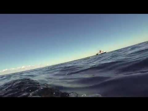рыбацкая симфония карелия