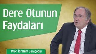 Dere Otunun Faydaları | Prof. İbrahim Saraçoğlu