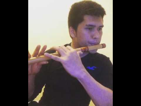 Teri-Meri flute version , Bodyguard
