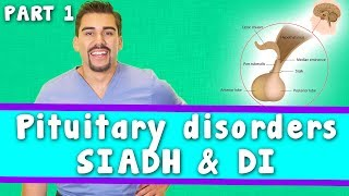 Pituitary SIADH vs. DI *Part 1* for Nursing Students