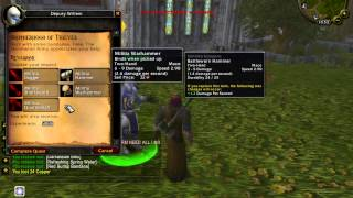 World of Warcraft: Mists of Pandaria FIRST Private Server Monk Panda 100% works