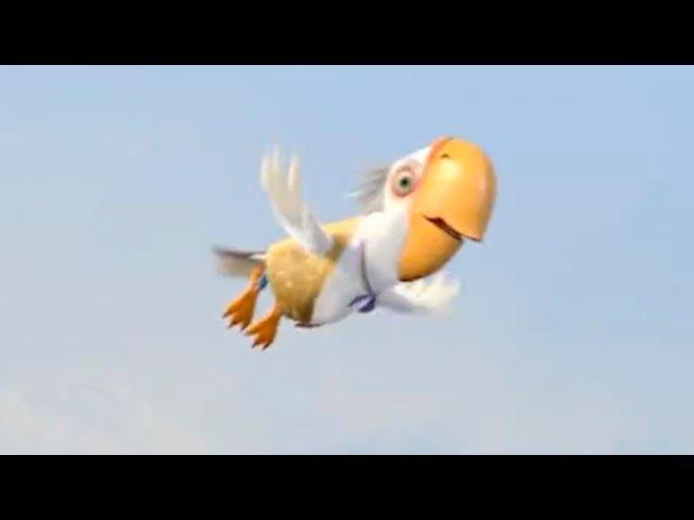 В поисках попугая