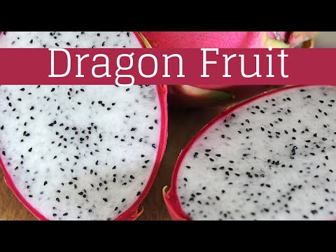 Top 5 Health Benefits Of Dragon Fruit | The Master Vegan