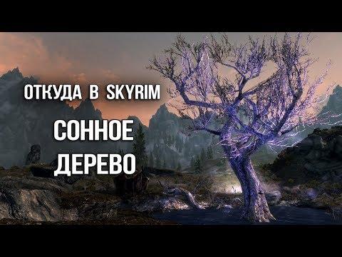 Skyrim: СЕКРЕТ СОННОГО ДЕРЕВА и УНИКАЛЬНЫЙ ЭЛИКСИР - ЛОР TES